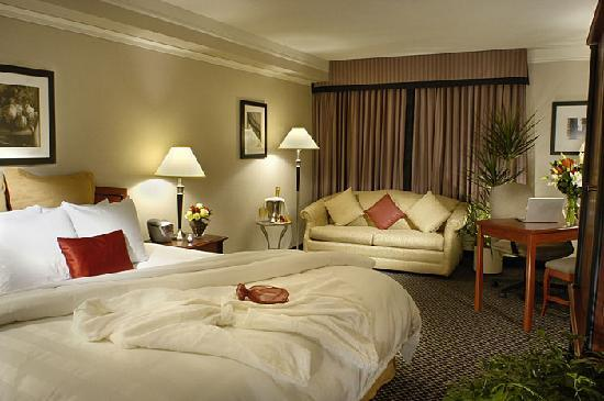 Toronto Don Valley Hotel & Suites : Executive Room