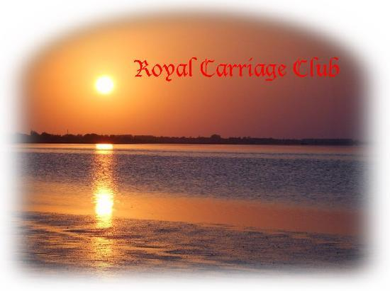 Royal Carriage Club Riding School: Our Sunset in front of our Club