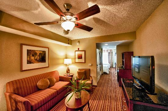 Attractive Hilton Garden Inn Fort Myers Airport / FGCU: Jr Suites Home Design Ideas