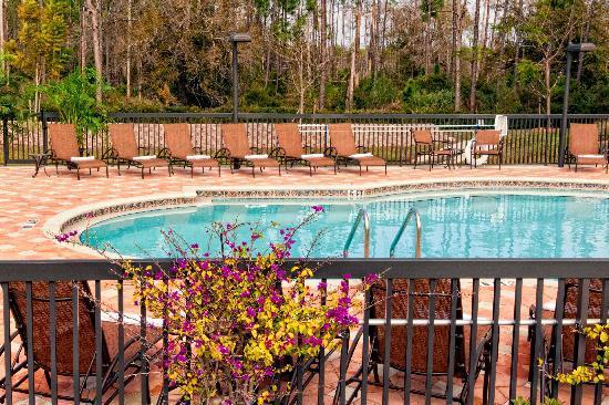 Hilton Garden Inn Fort Myers Airport Fgcu Fort Myers Fl Otel Yorumlar Ve Fiyat
