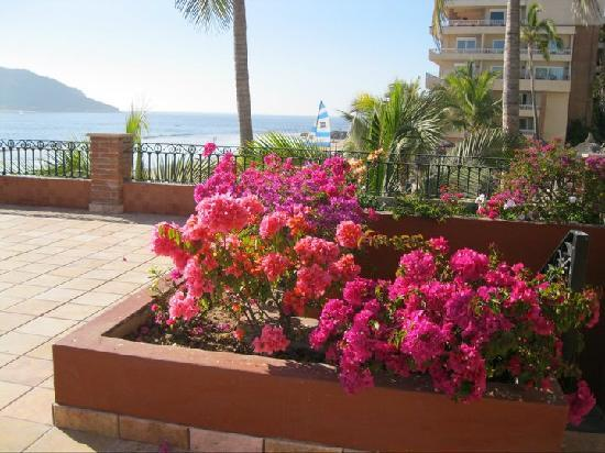 Hotel Playa Mazatlan: The gardeners must work overtime