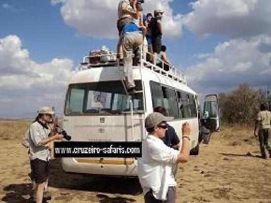 Cruzeiro Safaris - Day Tours : campus safari adventures