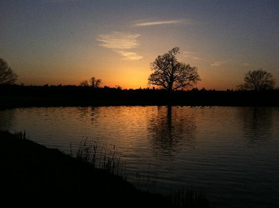 Coworth Park - Dorchester Collection: lake at sunset