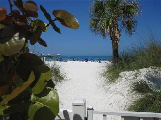 Hilton Clearwater Beach: View from table by pool