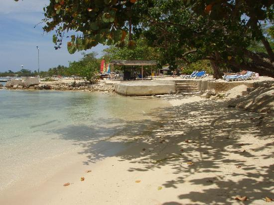 Nude Beach Early In The Morning - Picture Of Hedonism Ii, Negril - Tripadvisor-8424