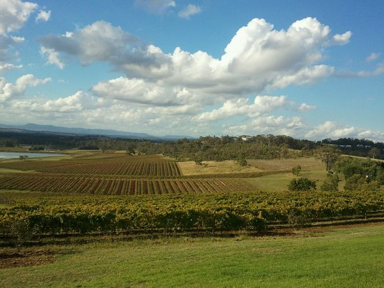 Pokolbin, Australien: beautiful view over one of the vineyards