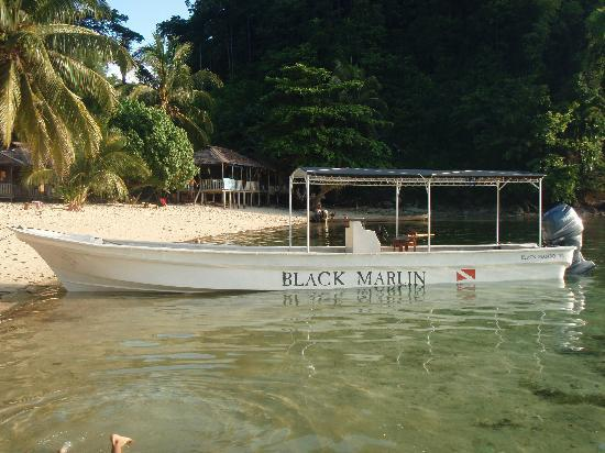Kadidiri Island, Indonesien: One of BMs Dive boats