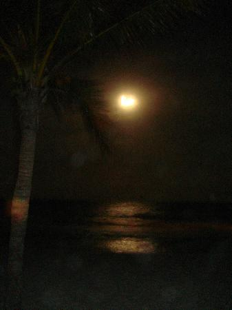 Catalonia Royal Tulum: beautiful at night