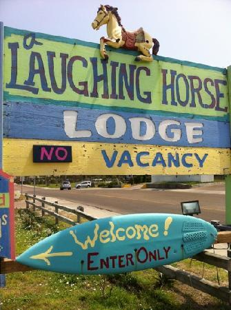 A Laughing Horse Lodge: laughin