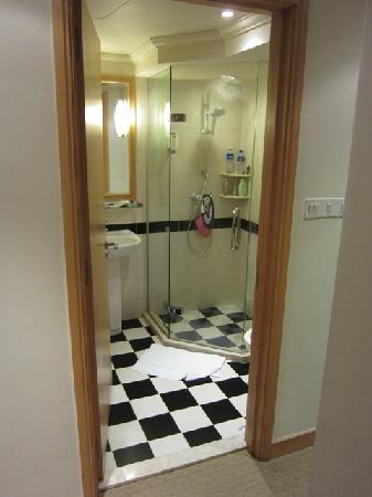 Winsland Serviced Suites by Lanson Place: The guest washroom