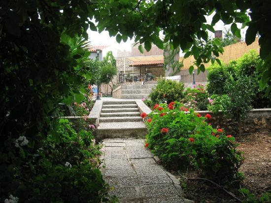 House Zambia: The garden