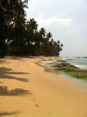 Sri Gemunu Beach Resort: Strand