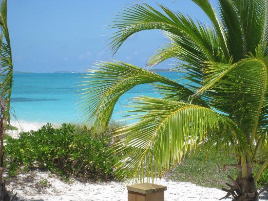 Paradise Bay Bahamas: vue de la terrasse