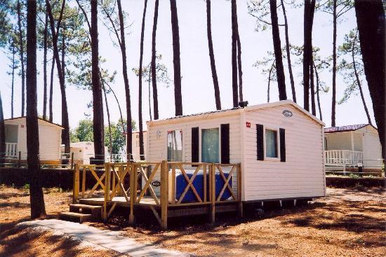 Parque de Campismo Orbitur S.Jacinto: Alojamentos