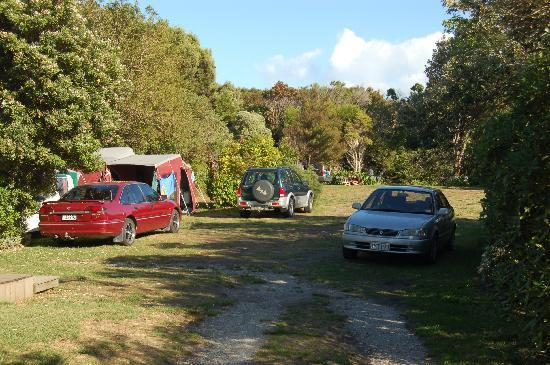 Farewell Gardens Motor Camp and Holiday Accommodation : General view of powered part of camp site