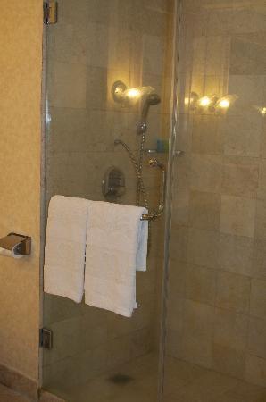 โรงแรมแกรนด์มูเทียรา: Added bonus, separate shower and bath