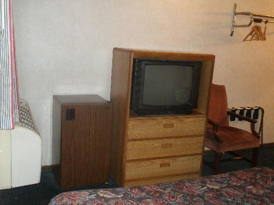 Regency Inn : Fridge, TV