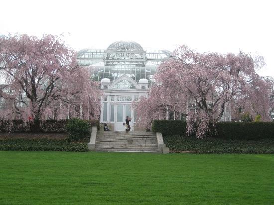 New York Botanical Garden Picture Of New York Botanical