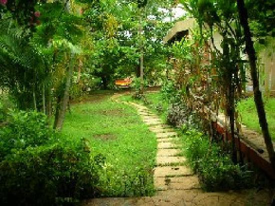 Kamath Residency Nature Resort: Landscapes