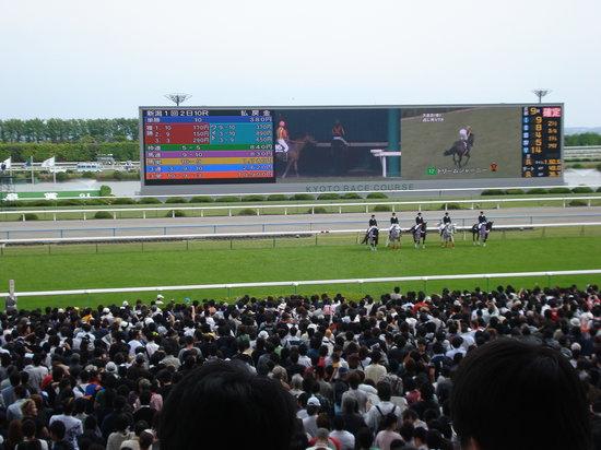 Kyoto Horse Racetrack: 天皇賞(2009年)の様子です