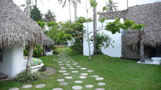 Monte Gordo, Mexico: Path leading to the beach