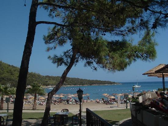 VClub Valtur: Spiaggia vista dalla pineta della zona piscina