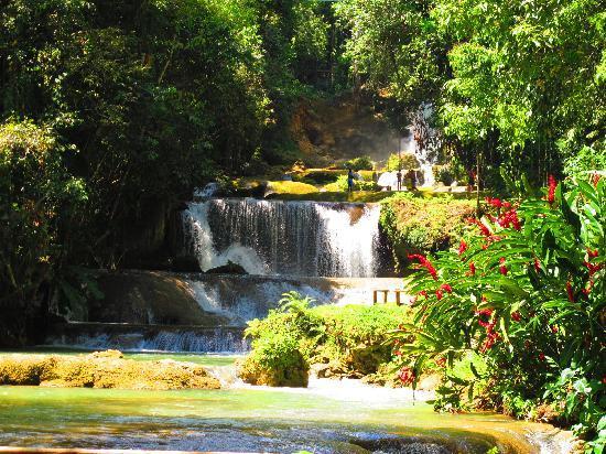 Beautiful YS Falls