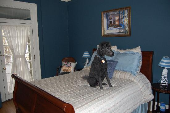Kennedy Mansion: Beautiful room and pet friendly!