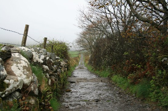 Sligo, Irlanda: The trail is a sheep track - bring good shoes