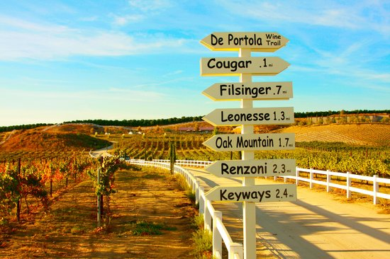 Destination Temecula Wine Tours