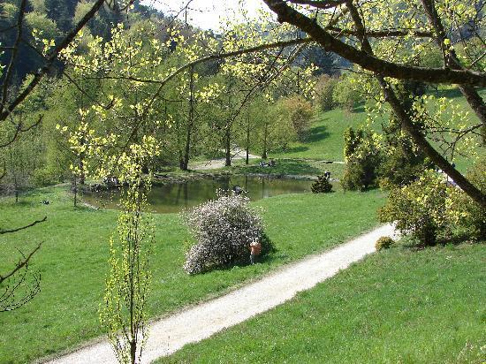 l'Arboretum National du Vallon de l'Aubonne : Walks by the water