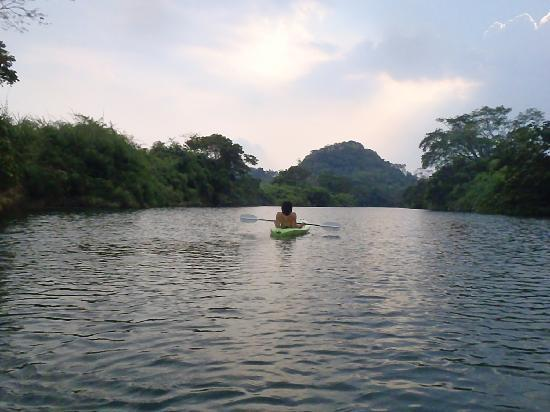 Punta Gorda, Belize: kayaking down the Moho River