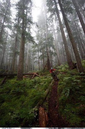 Whistler, Kanada: Mountain Biking
