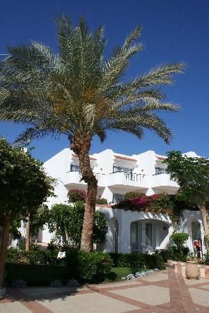 Jaz Fanara Resort & Residence: Allée
