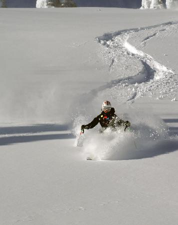 Great Northern Snowcat Skiing: Great Northern