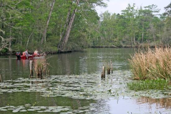 Live Oak Landing, an RVC Outdoor Destination: Black Creek