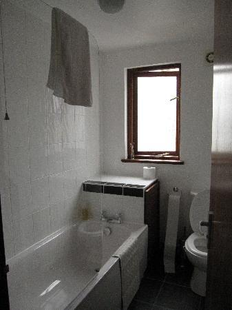 Little Leaf Guest House : en suite bathroom and shower