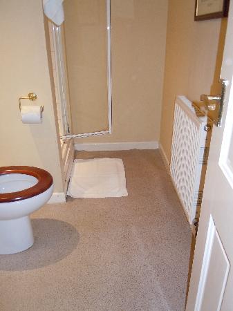 The Punchbowl Inn: Bathroom/Shower/Floor