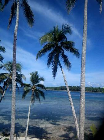 Pandanus Bay Waterfront Apartments: View from the back deck of our unit