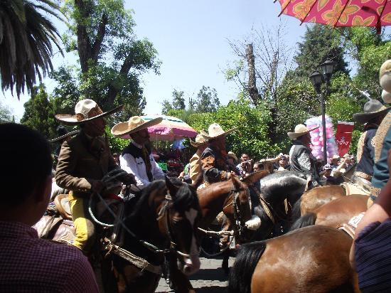 Jerez de Garcia Salinas, Meksiko: Caballos y hombres vestidos de charros.