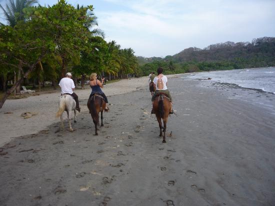 Hotel Sol Samara: horseback riding on Samara