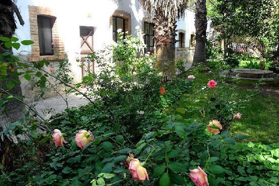 Hotel Rancho El Morillo: Roses in front of Rooms