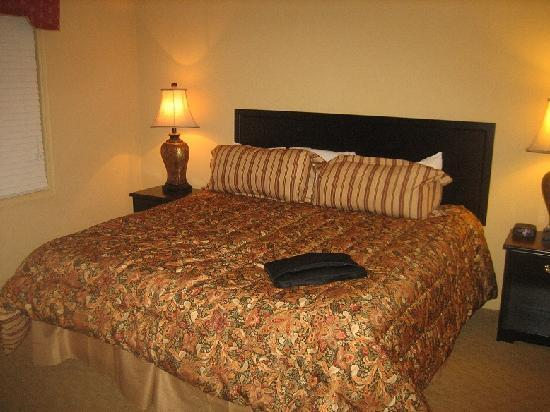 Williamsburg Plantation Resort : king bed master bedroom