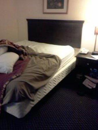 Howard Johnson Enchanted Land Hotel Kissimmee FL: the bed