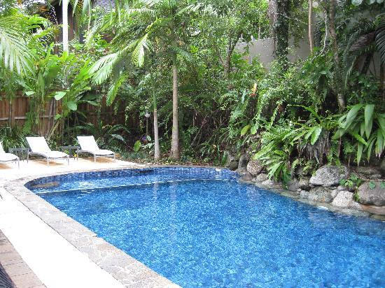 Coral Sea Villas Port Douglas: The POOL