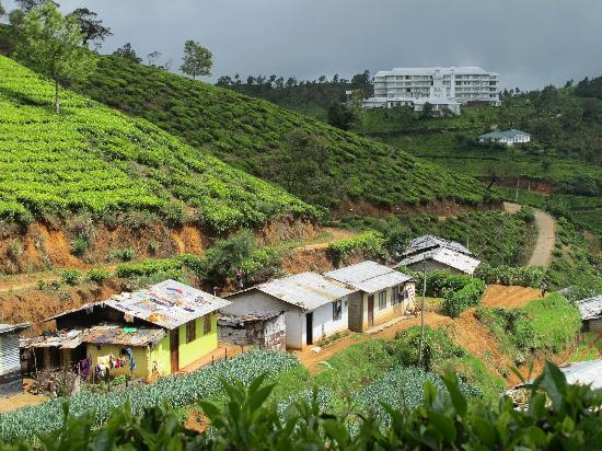 trip to nuwara eliya essay