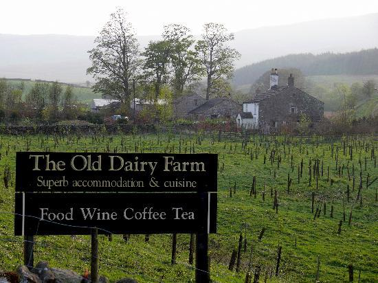 The Old Dairy Farm: The hotel from the road