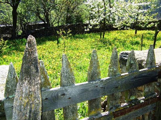 Blesle, France: juste à côté, la nature en avril