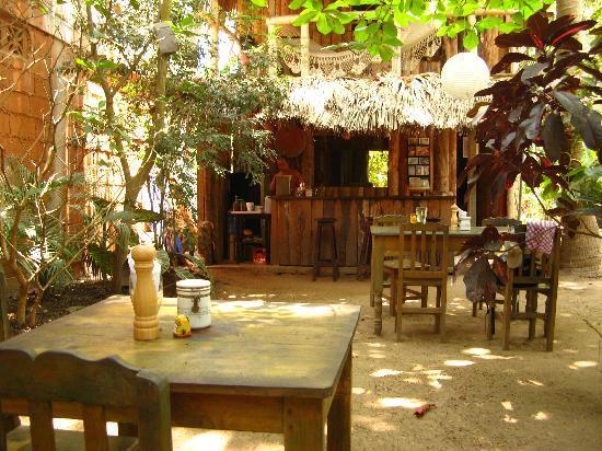 Orale Cafe : Cool garden !