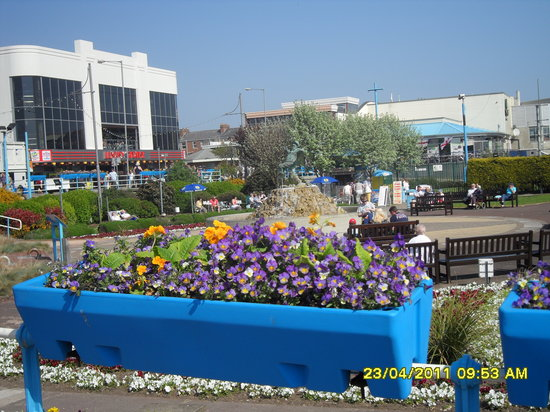 Beeston Lodge: Blooming lovely